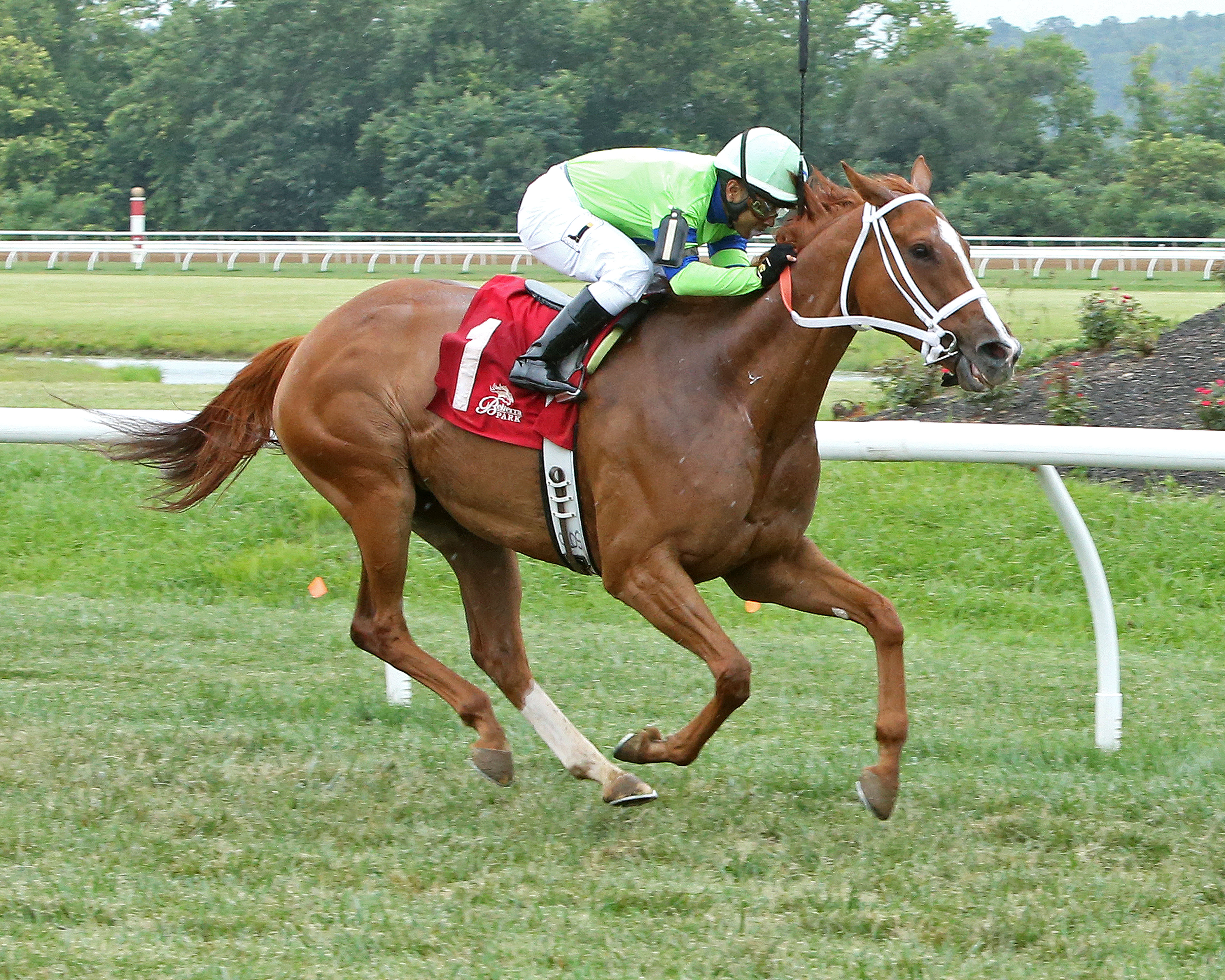 For otbo sale information click on link on this masthead ohio maiden and running through her conditions in impressive style while stretching out in every start at thistledown she boasted daily racing form running falaconquin