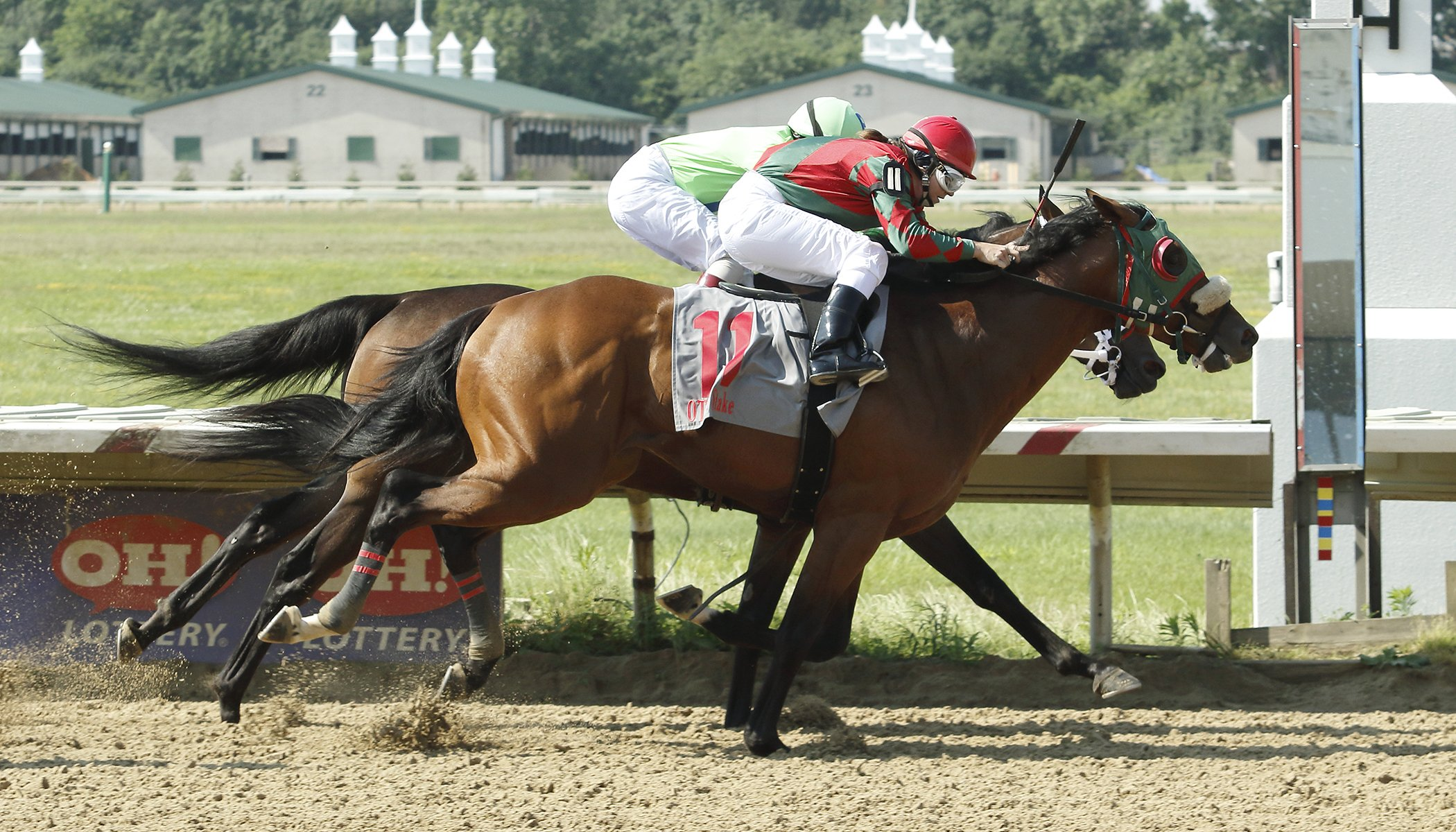 Ohio Sale And Stakes Updates For July Ohio Thoroughbred